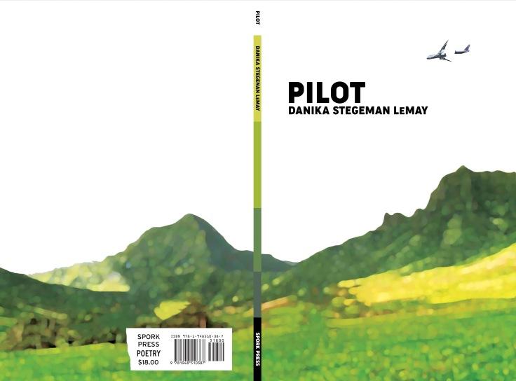 Pilot book cover
